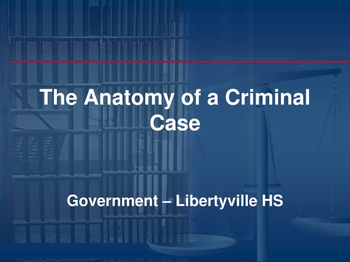The anatomy of a criminal case