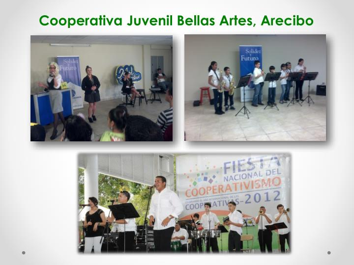 Cooperativa Juvenil Bellas Artes, Arecibo