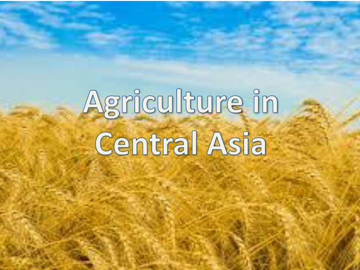 Agriculture in Central Asia
