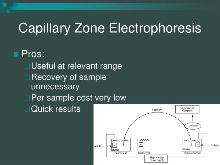 Capillary Zone Electrophoresis