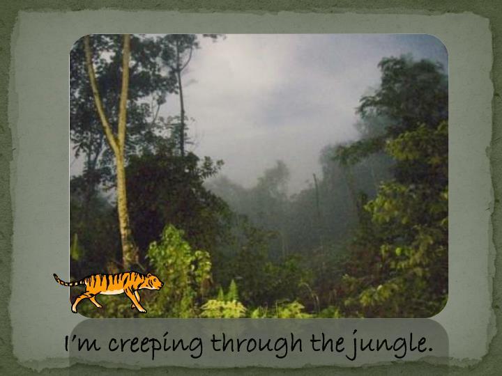 I'm creeping through the jungle.