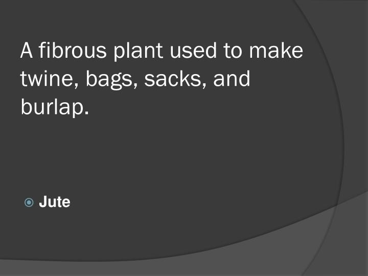 A fibrous plant used to make twine, bags, sacks, and burlap.