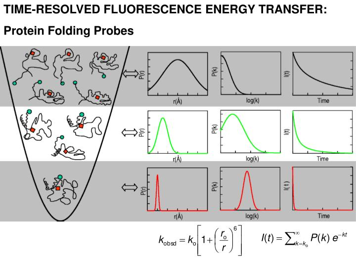 TIME-RESOLVED FLUORESCENCE ENERGY TRANSFER:
