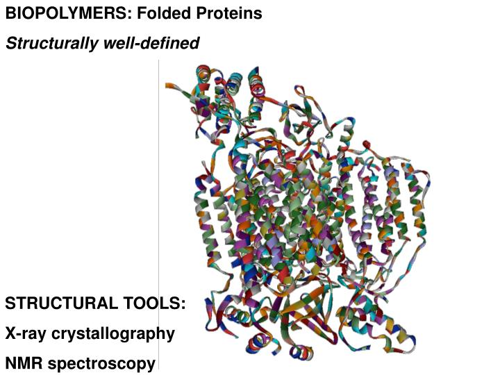 BIOPOLYMERS: Folded Proteins