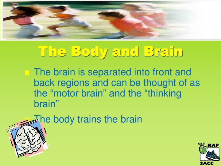 The Body and Brain
