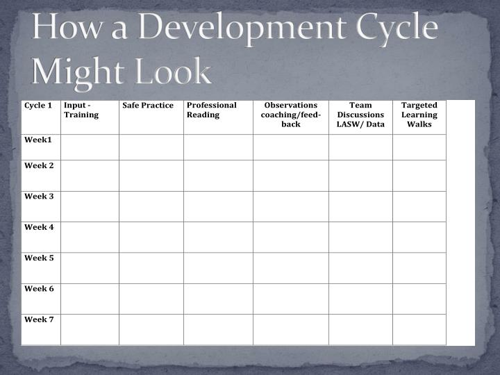 How a Development Cycle Might Look