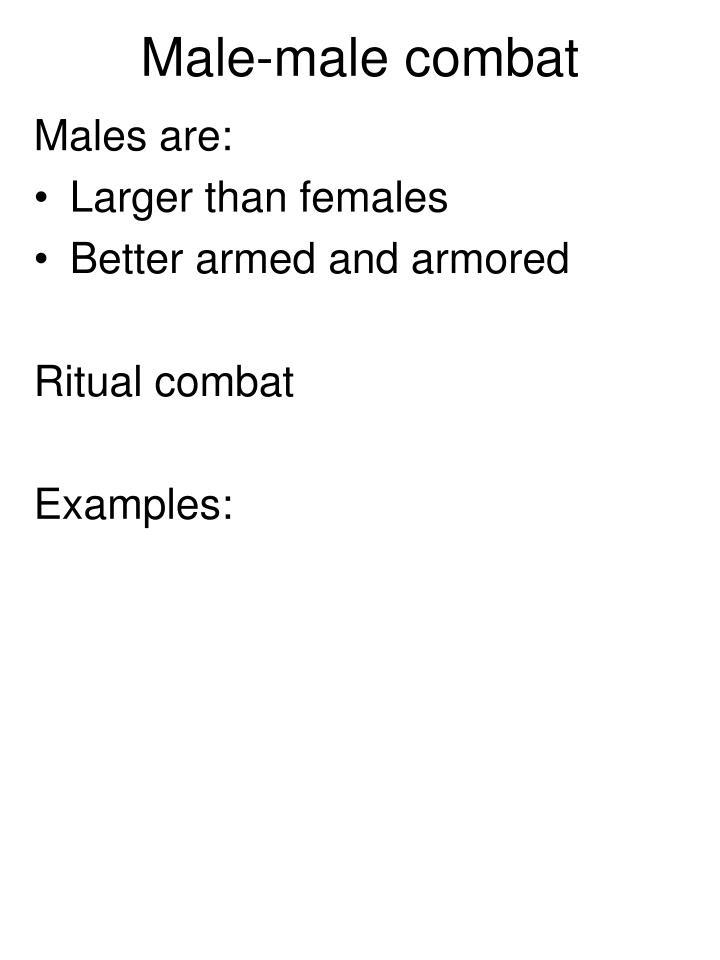 Male-male combat