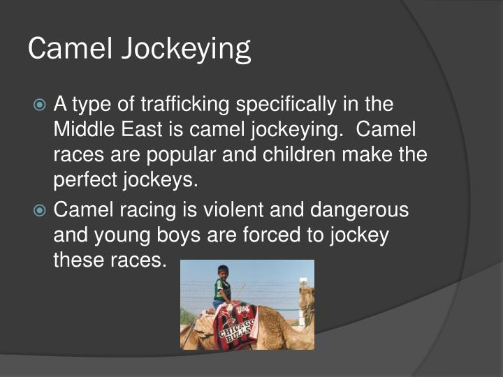 Camel Jockeying