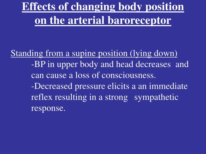 Effects of changing body position on the arterial baroreceptor