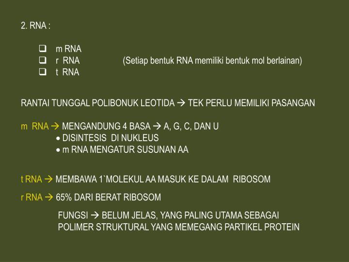 RNA :