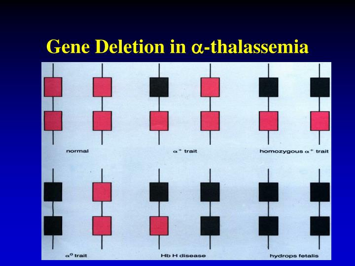 Gene Deletion in