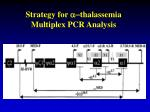 strategy for a thalassemia multiplex pcr analysis