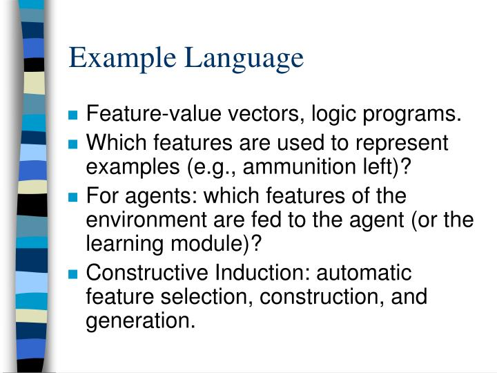 Example Language