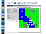 the york ma environment1