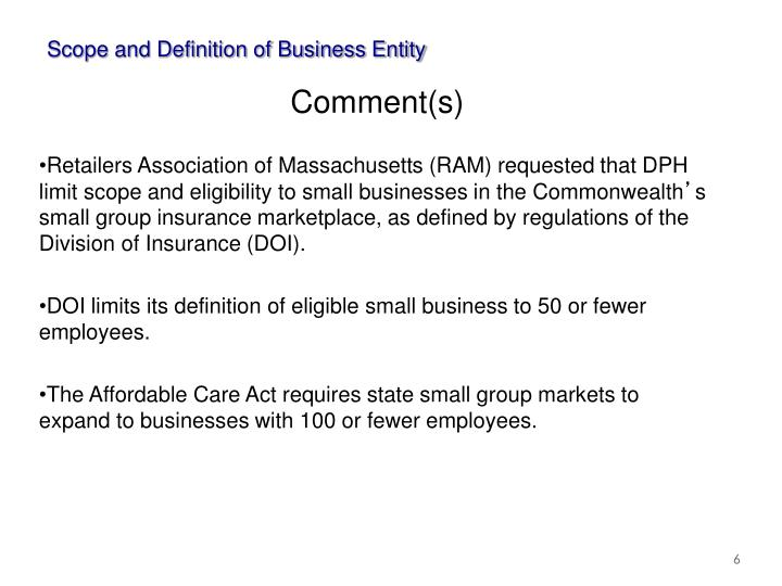 Scope and Definition of Business Entity