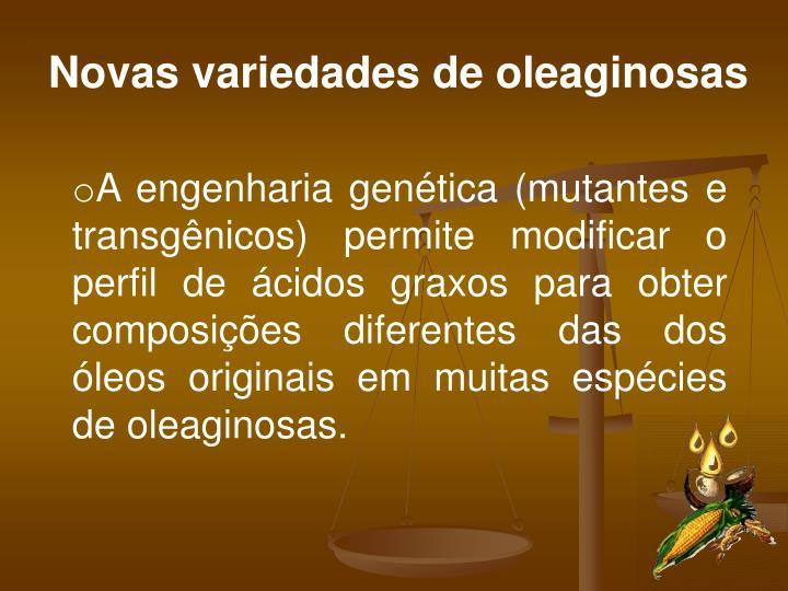 Novas variedades de oleaginosas