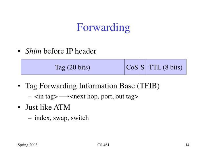 TTL (8 bits)