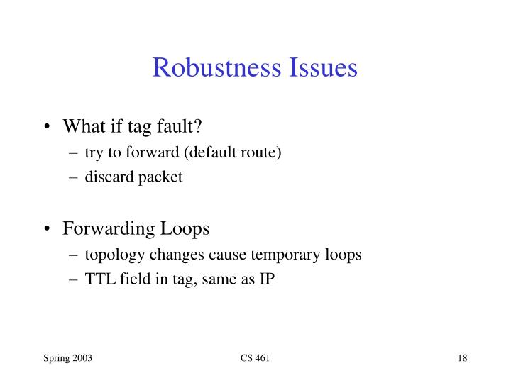 Robustness Issues