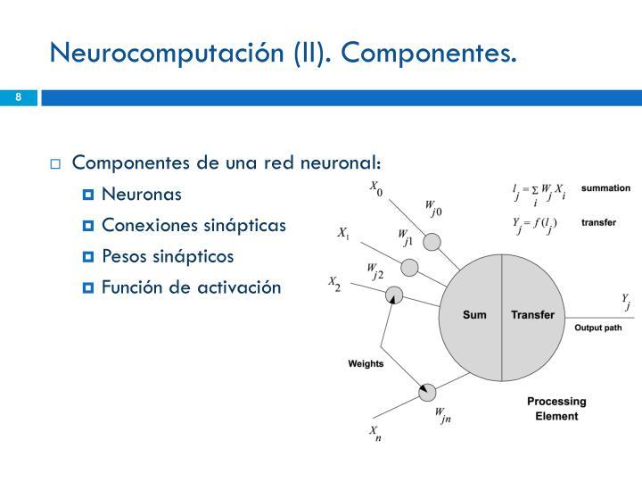 Neurocomputación (II). Componentes.