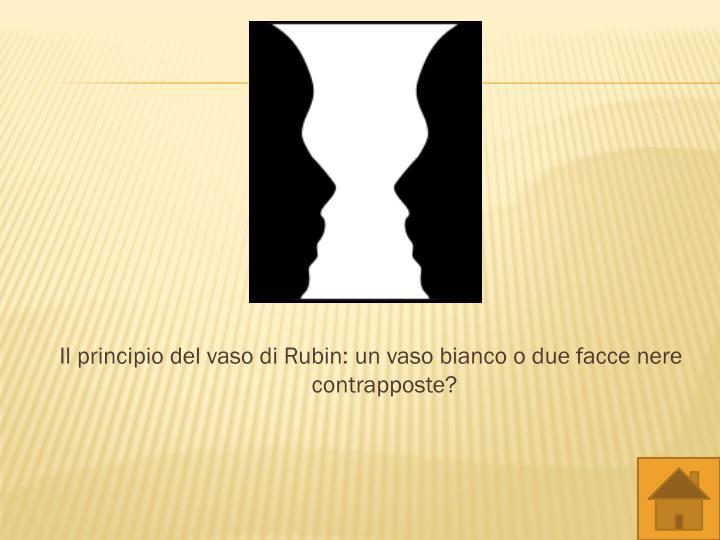 Il principio del vaso di Rubin: un vaso bianco o due facce nere contrapposte?