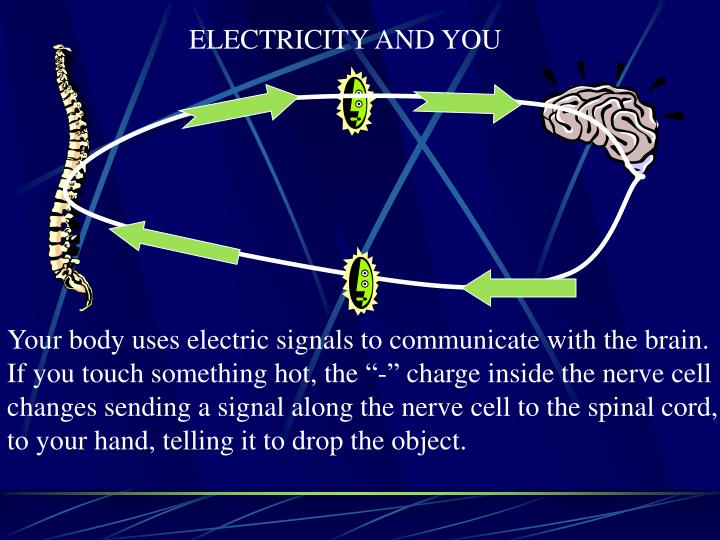 ELECTRICITY AND YOU