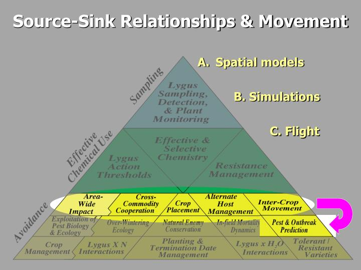 Source-Sink Relationships & Movement