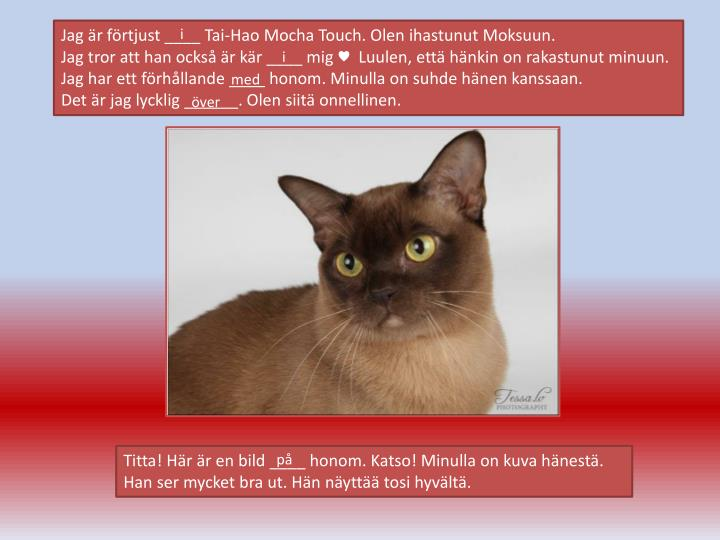Jag är förtjust ____ Tai-Hao Mocha Touch. Olen ihastunut Moksuun.