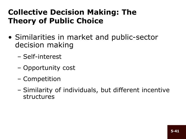 Collective Decision Making: The Theory of Public Choice