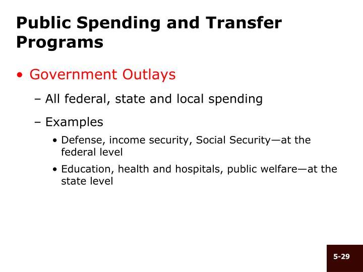 Public Spending and Transfer Programs