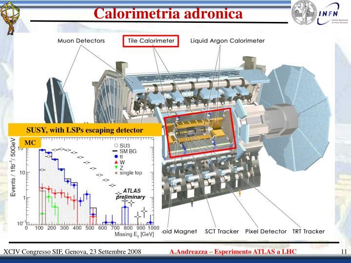 Calorimetria adronica