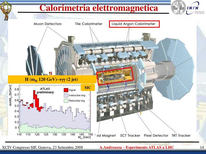 Calorimetria elettromagnetica