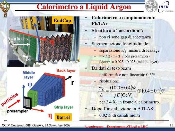 Calorimetro a Liquid Argon