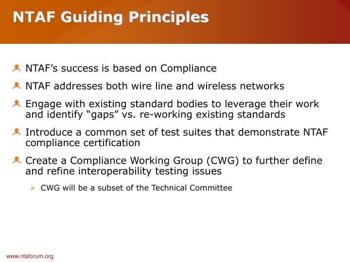 NTAF Guiding Principles