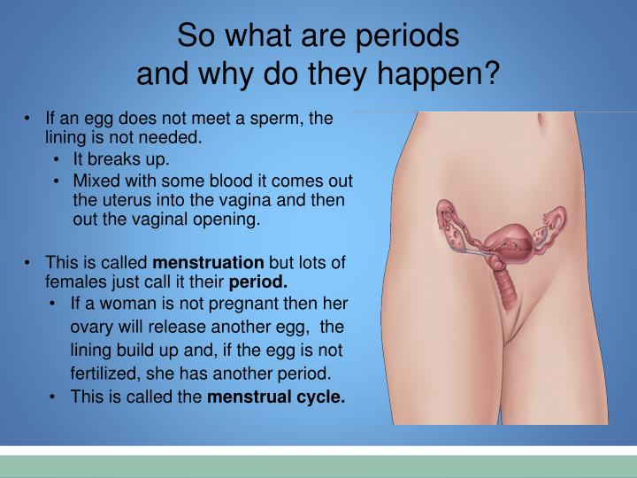 So what are periods
