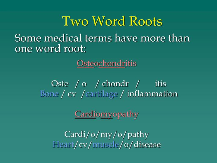 Two Word Roots
