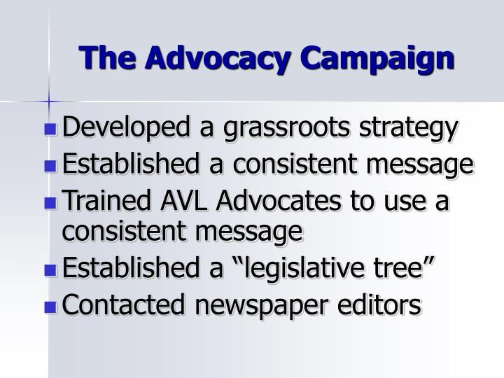 The Advocacy Campaign