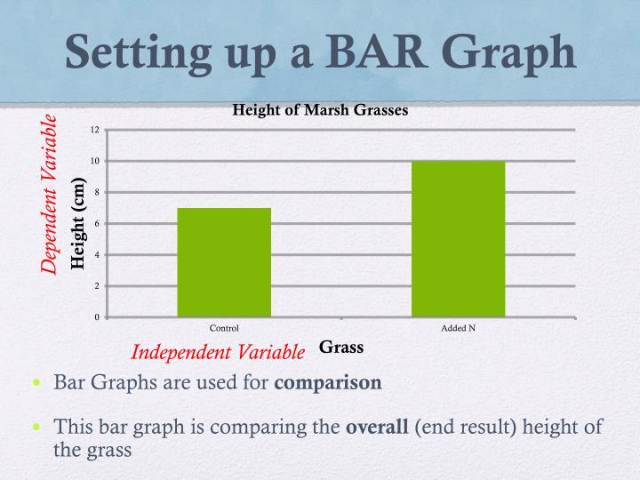 Setting up a BAR Graph
