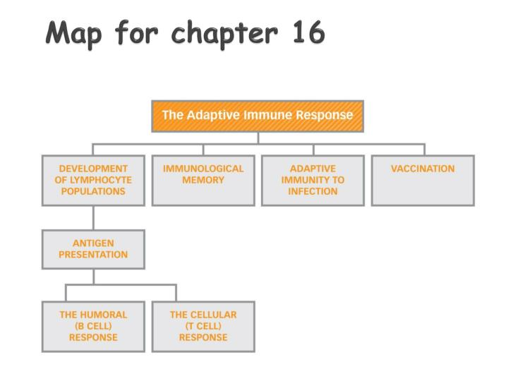 Map for chapter 16