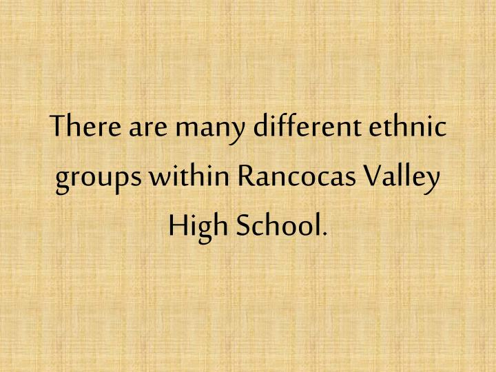 There are many different ethnic groups within Rancocas Valley High School.