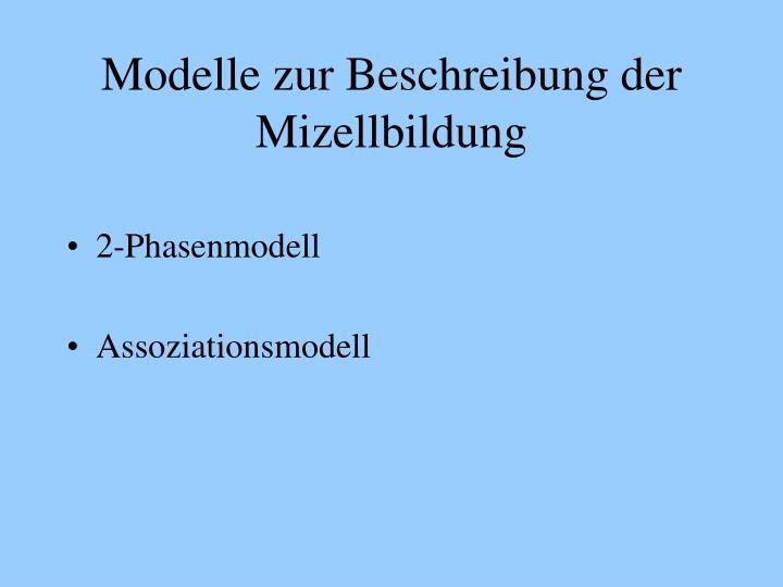 Modelle zur Beschreibung der Mizellbildung