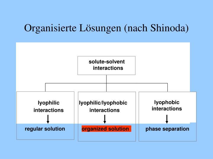 Organisierte Lösungen (nach Shinoda)
