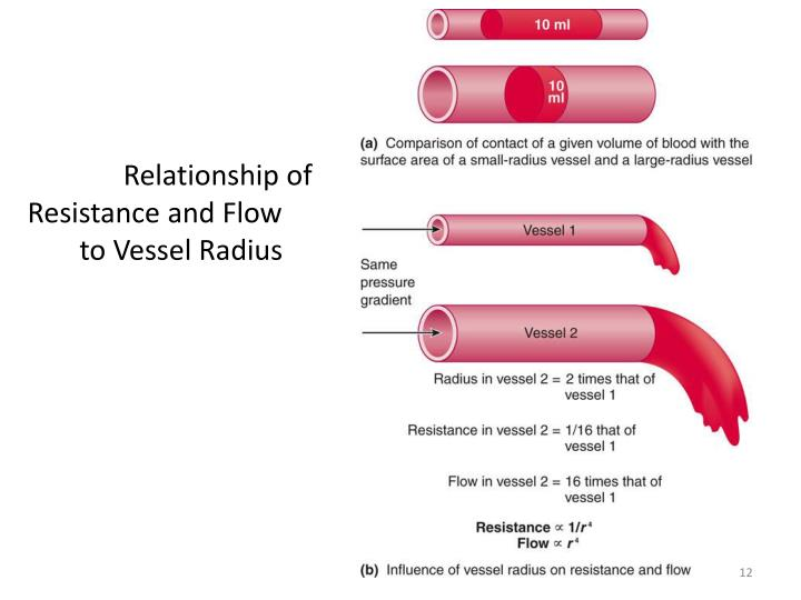 Relationship of Resistance and Flow to Vessel Radius