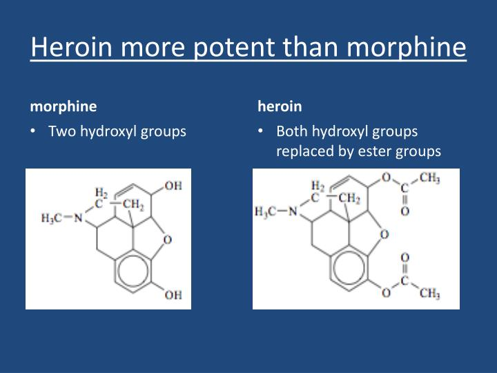 Heroin more potent than morphine