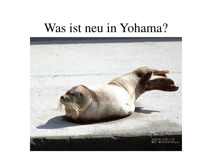 Was ist neu in Yohama?