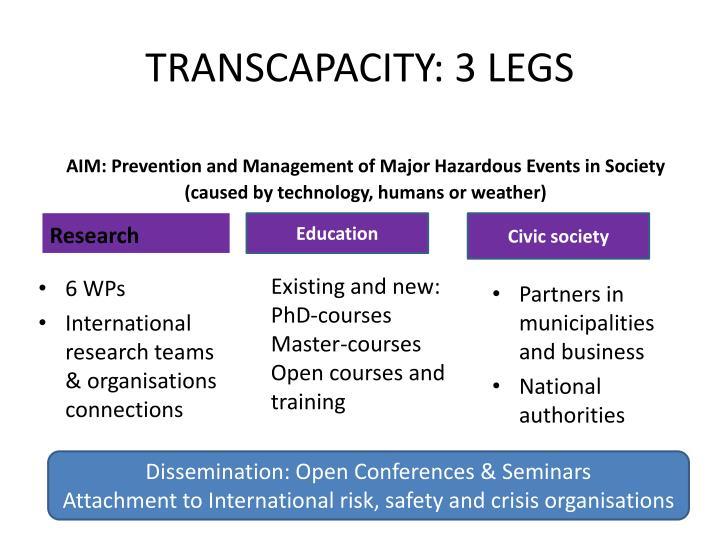 TRANSCAPACITY: 3 LEGS