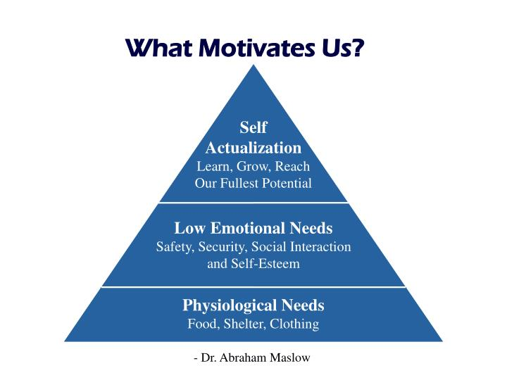 What Motivates Us?