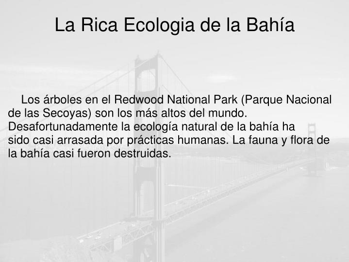 La Rica Ecologia de la Bahía