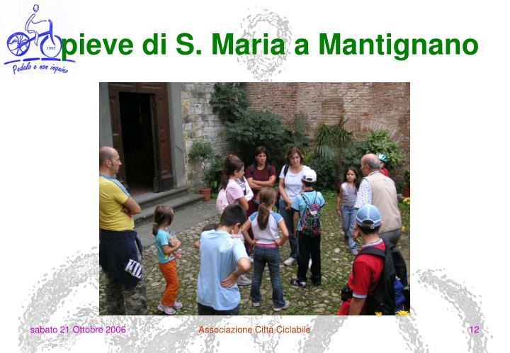 pieve di S. Maria a Mantignano