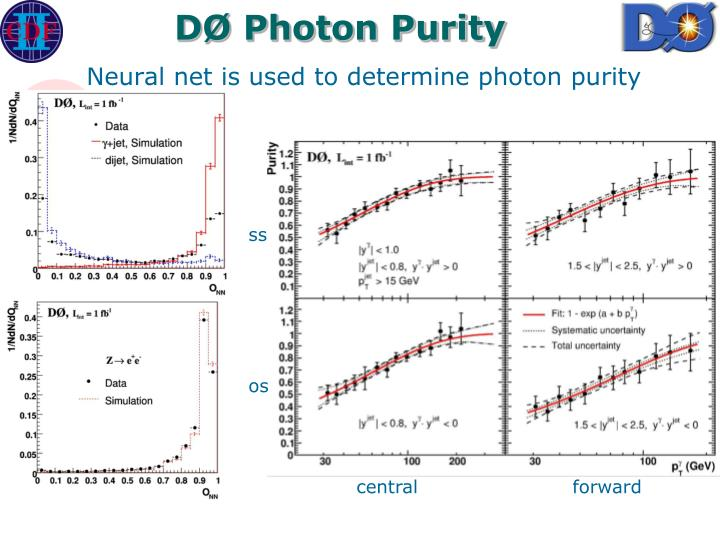 DØ Photon Purity