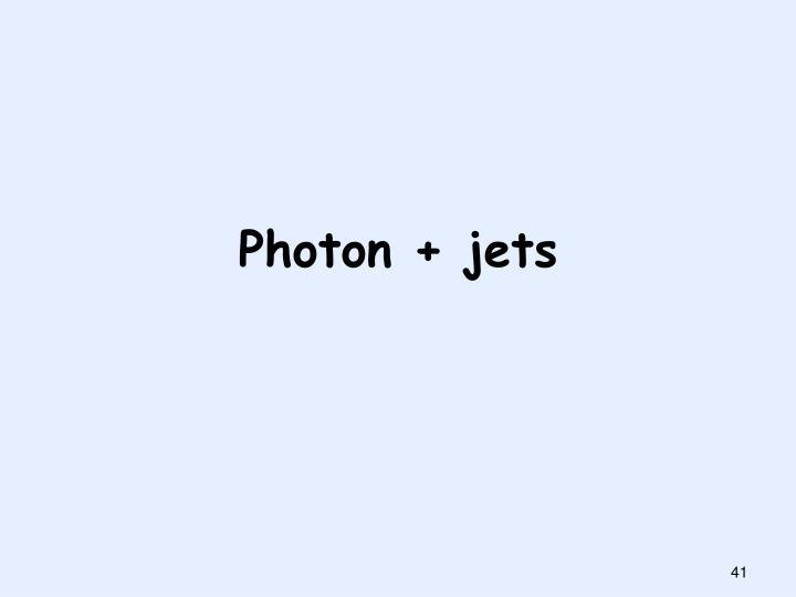 Photon + jets